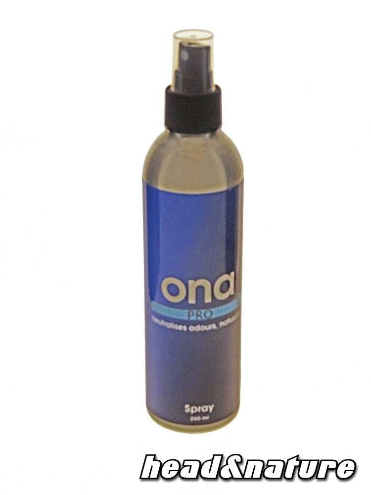 ona anti rauch spray pro 250ml headshop