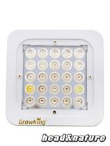 Growking LED Armatur 50W Wuchs #0